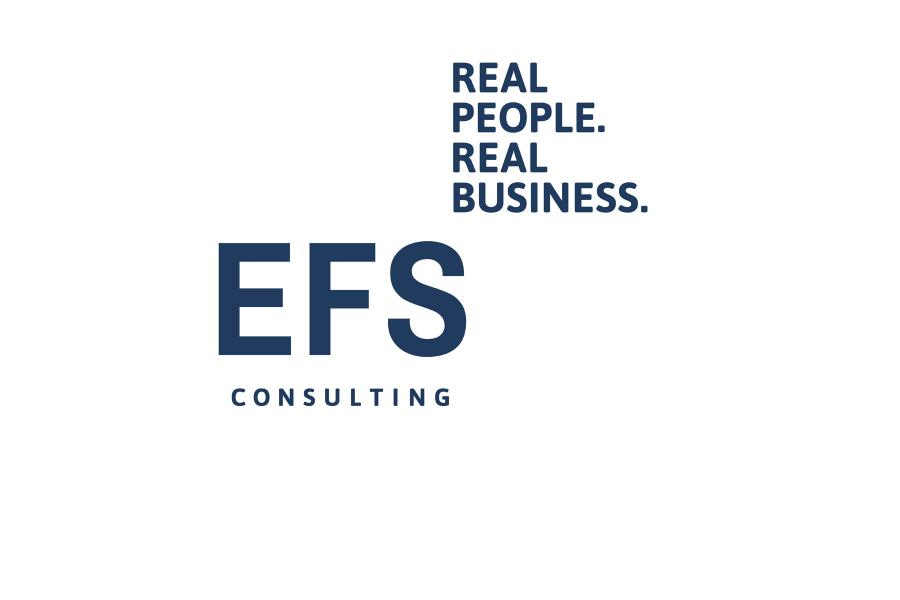 EFS Consulting, Logo